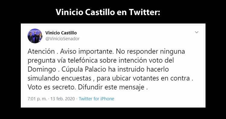 Vinicio Castillo sobre las encuestas vía telefónica